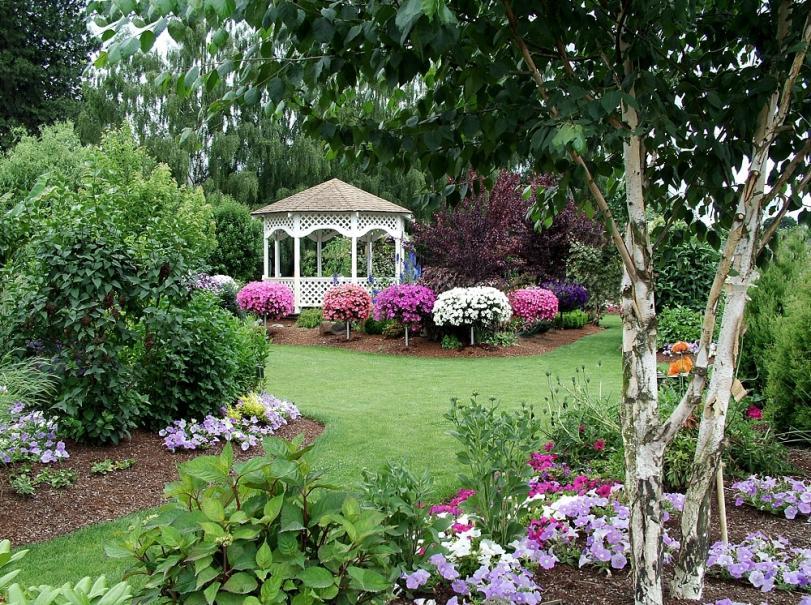 6 astuces pour obtenir rapidement un beau jardin | Gamm vert