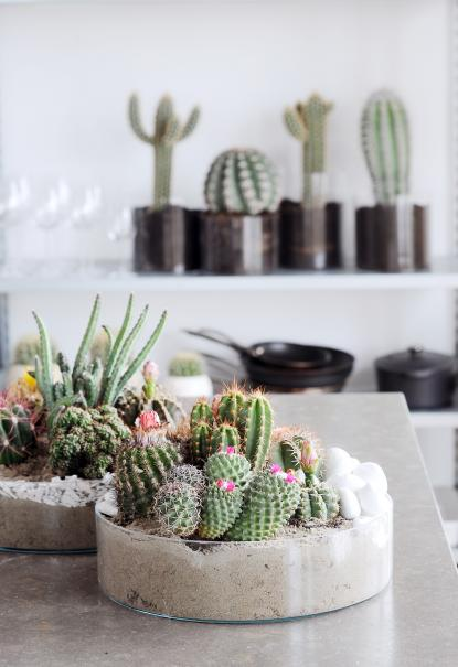 Que faire dans la maison en septembre le magazine gamm vert - Humidite dans la maison que faire ...