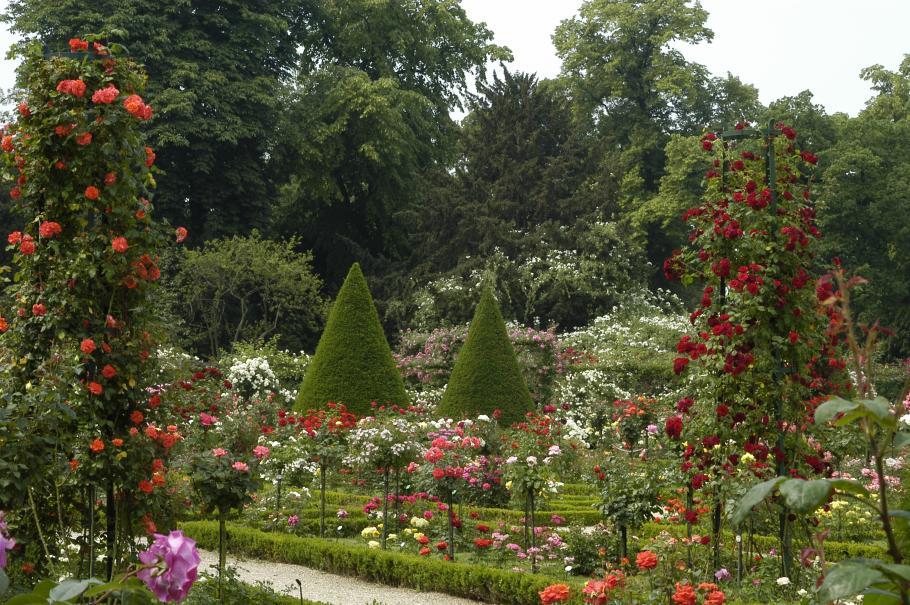 Le parc de bagatelle gamm vert for Bagatelle jardin