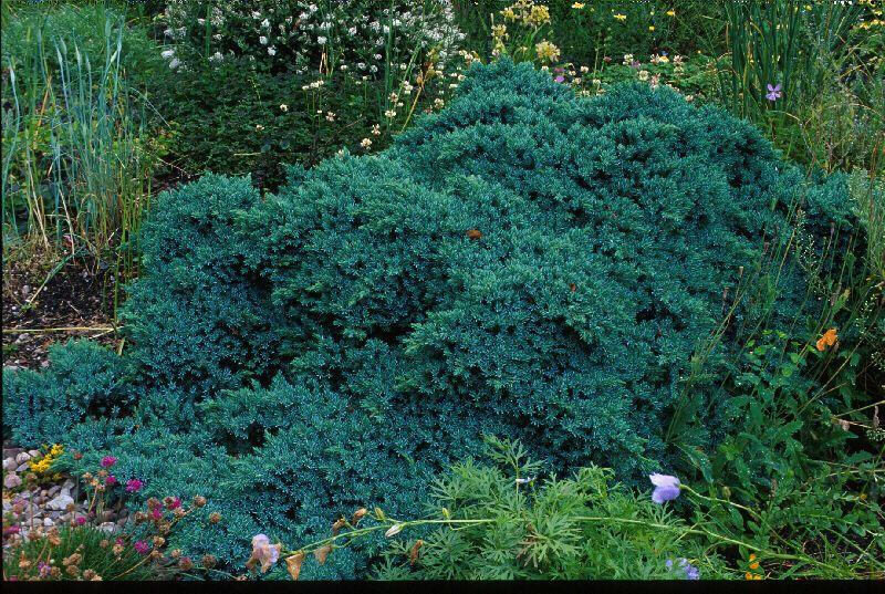 Passade de jardinier gamm vert for Conseil de jardinier