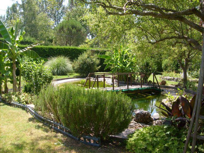 Lutter contre les algues d\'un plan d\'eau   Gamm vert