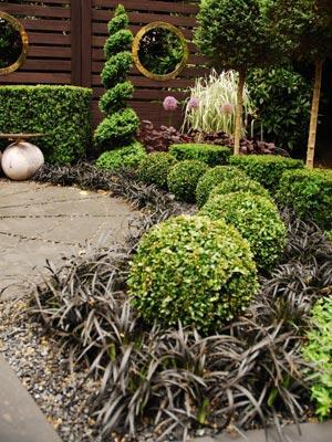 Un petit jardin contemporain de buis topiaires gamm vert - Jardin topiaire ...