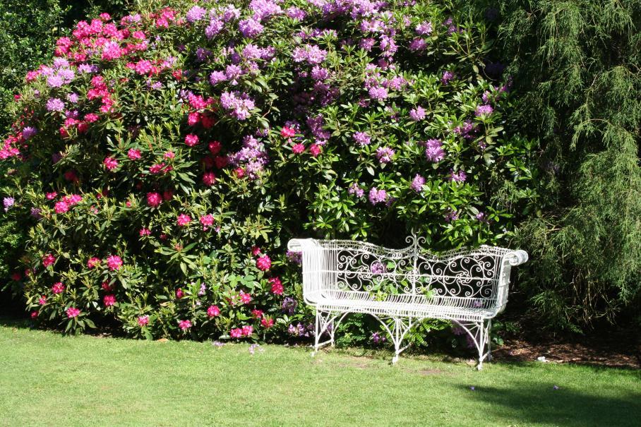 Chez vous le charme d 39 un jardin l 39 anglaise gamm vert for Jardin romantique anglais