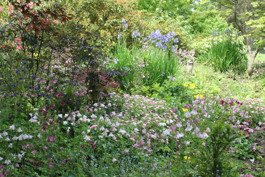 Leçon de jardin : Composez un jardin romantique | Gamm vert