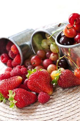 planter et cultiver les fruits rouges framboisiers m riers cassissiers gamm vert. Black Bedroom Furniture Sets. Home Design Ideas