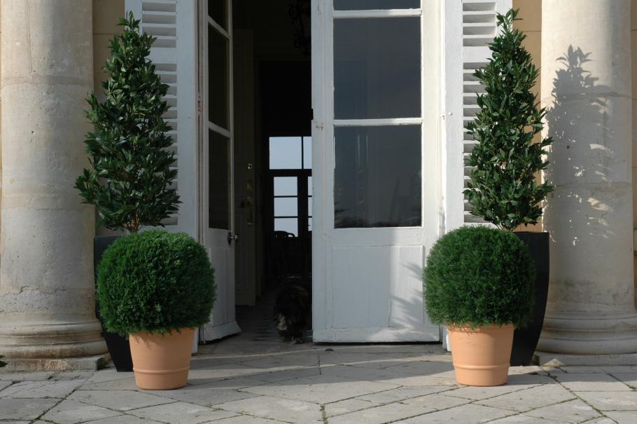Choisir des plantes artificielles gamm vert for Choisir plantes jardin