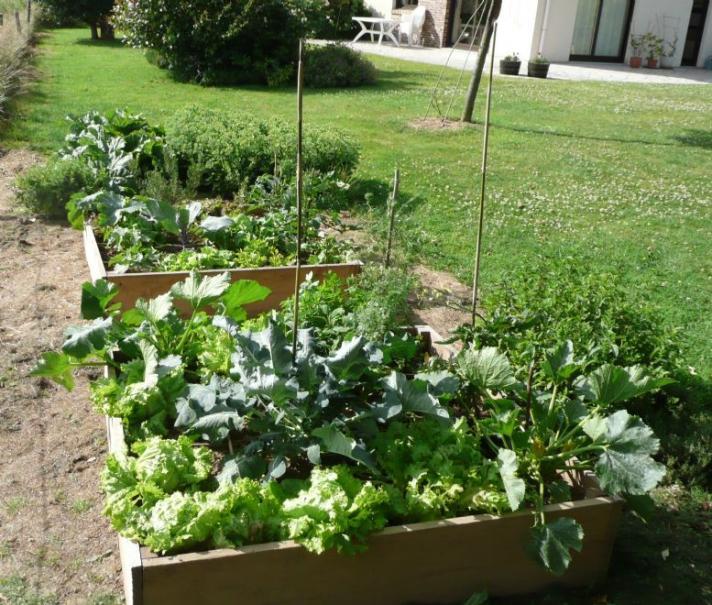 Potager en carr s gamm vert for Plan de jardin en ligne