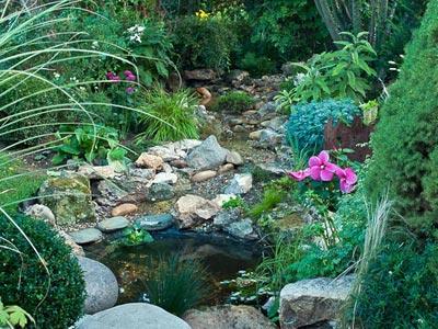 Creer Un Ruisseau Dans Son Jardin Gamm Vert