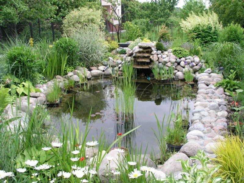 Installer et construire un bassin | Le Magazine — Gamm vert