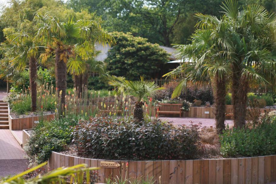 Parc zoologique et paysager de champrepus le magazine for Jardin zoologique tropical