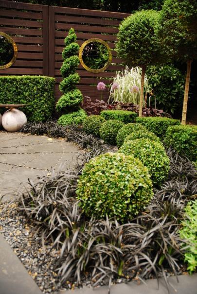10 recettes pour bien choisir des plantes pour un petit jardin ...