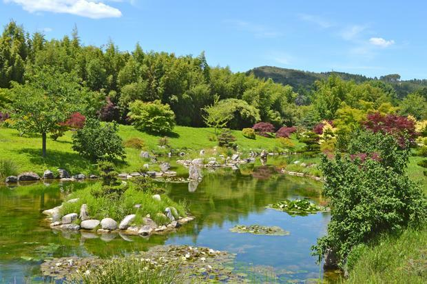 Julie p 34670 le magazine gamm vert for Acheter jardin japonais