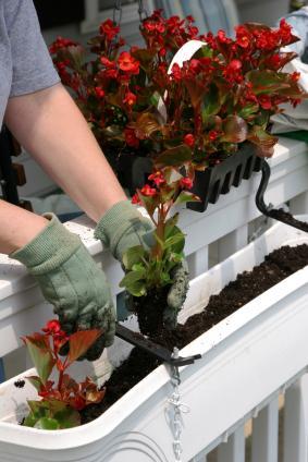 Fen tres et balcons fleuris le magazine gamm vert - Quoi mettre dans une pinata ...