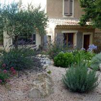 Plantes Choisies Pour Jardins Secs Gamm Vert