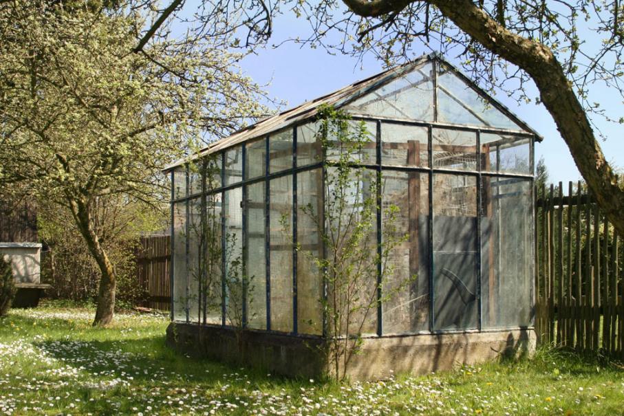 Hiverner ses plantes sous serre | Gamm vert