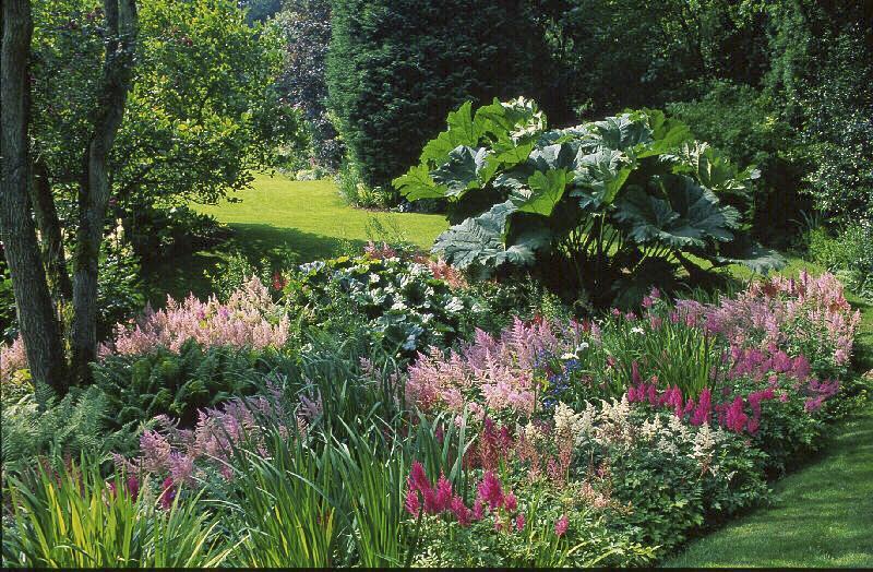 1- Le jardin de Normandie | Gamm vert