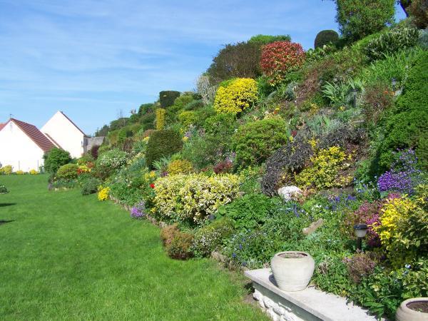 6 points-clés pour aménager et fleurir un talus | Gamm vert