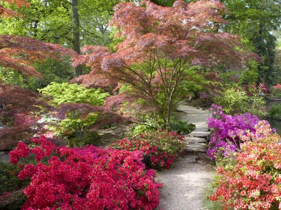 Un coin de jardin japonisant et zen   Gamm vert