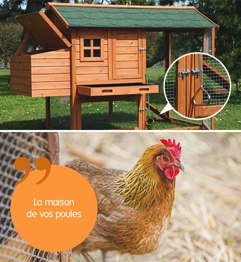 j 39 l ve des poules dans mon jardin gamm vert. Black Bedroom Furniture Sets. Home Design Ideas