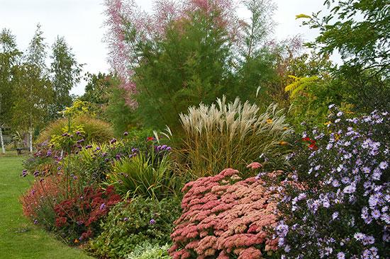 massif de vivaces l 39 automne en majest sc nes de jardins. Black Bedroom Furniture Sets. Home Design Ideas