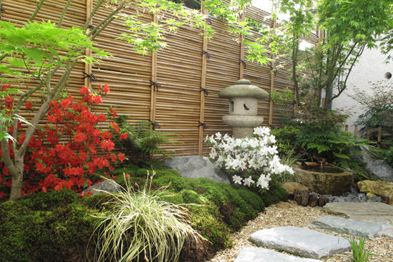 un d cor japonais dans un petit jardin l 39 ombre sc nes de jardins. Black Bedroom Furniture Sets. Home Design Ideas