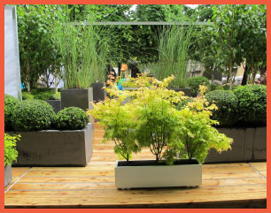 Plantes Decoratives Extrieur Affordable Location De Plantes Pour With Plantes Decoratives
